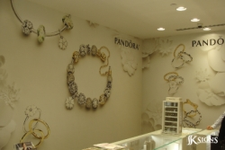 Pandora Wallpaper Installed in Mississauga